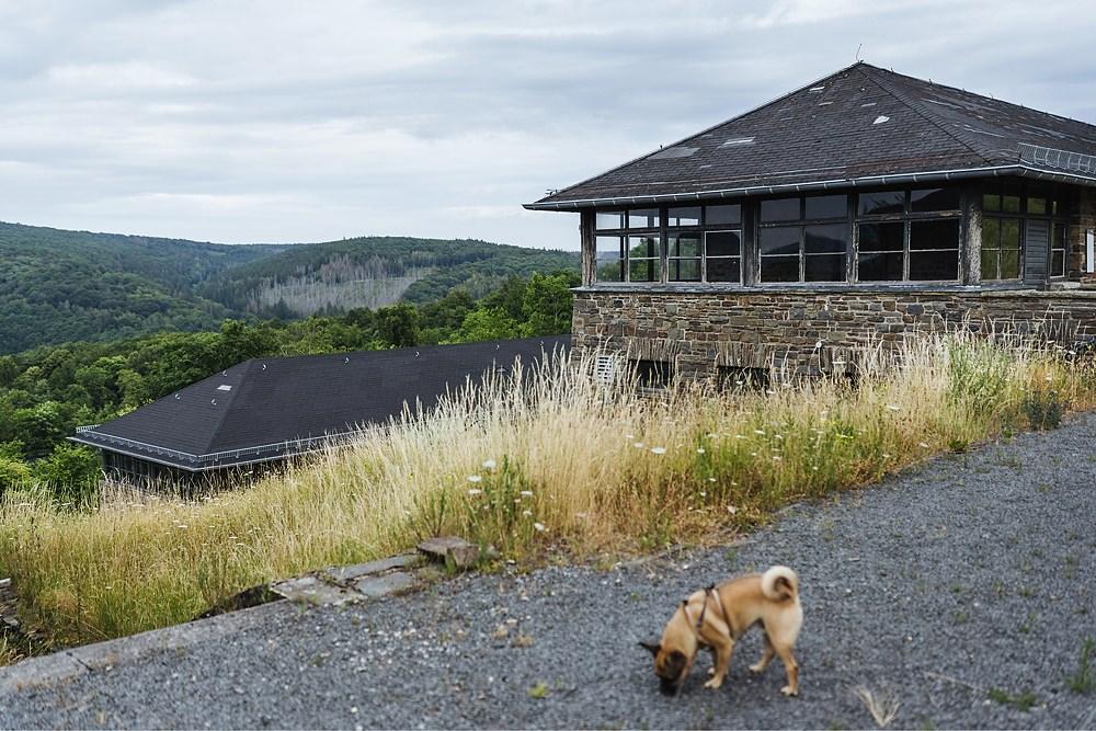 Ausflug Hund Nationalpark Eifel Ordensburg Vogelsang