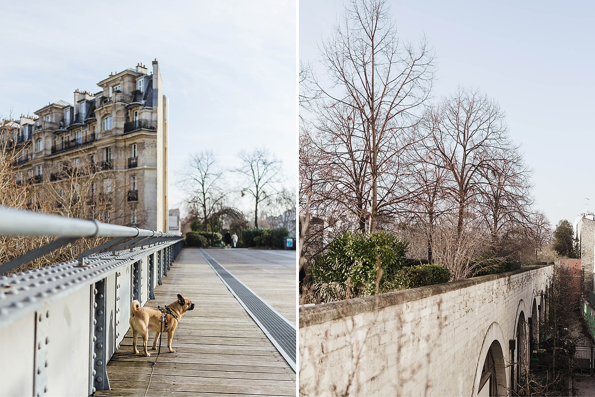 Paris Hund Highline 0007