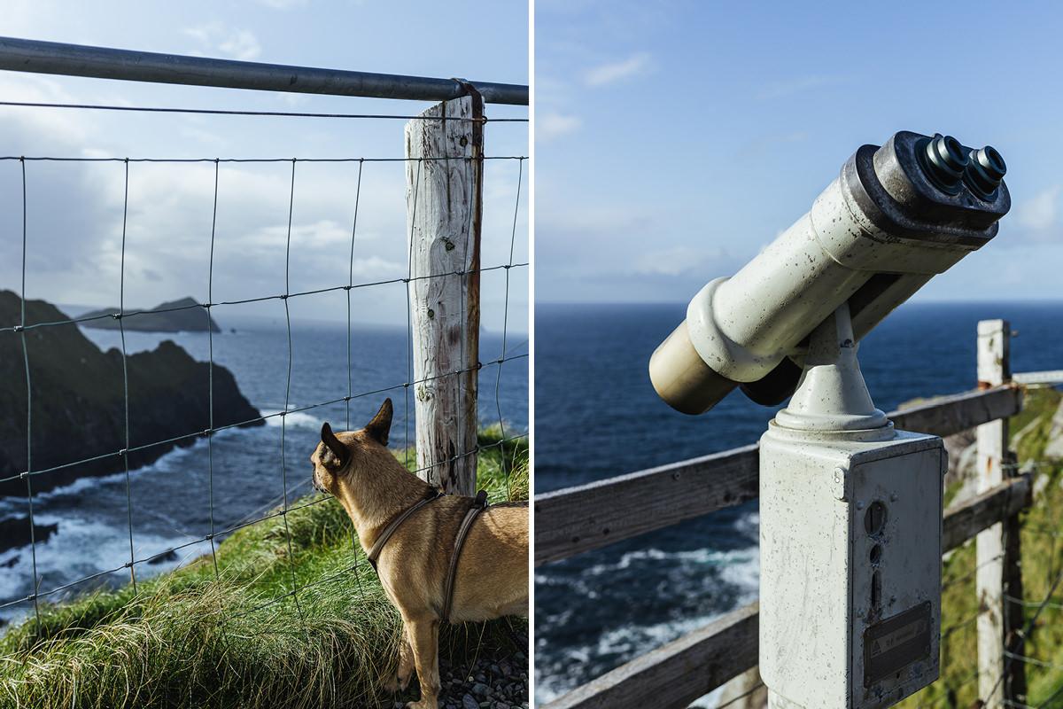 Ausflug mit Hund Irland Kerry Cliffs