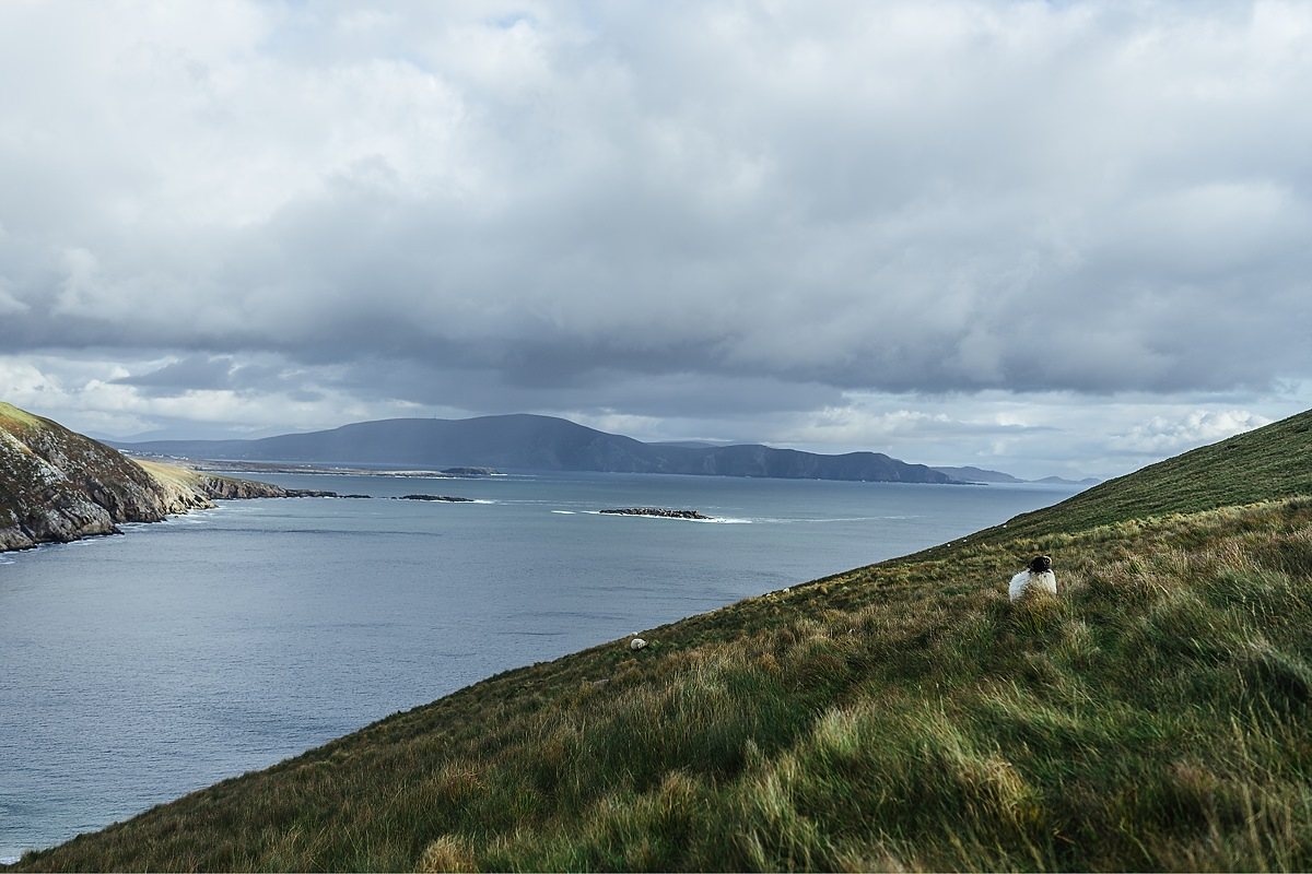 Keem Bay Hund Achill Irland 014