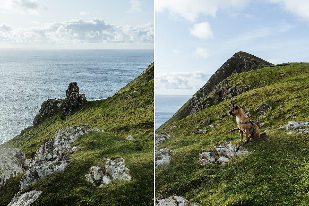 Keem Bay Hund Achill Irland 019