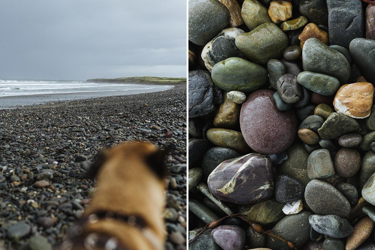 carrowniskey beach dog hund irland 002