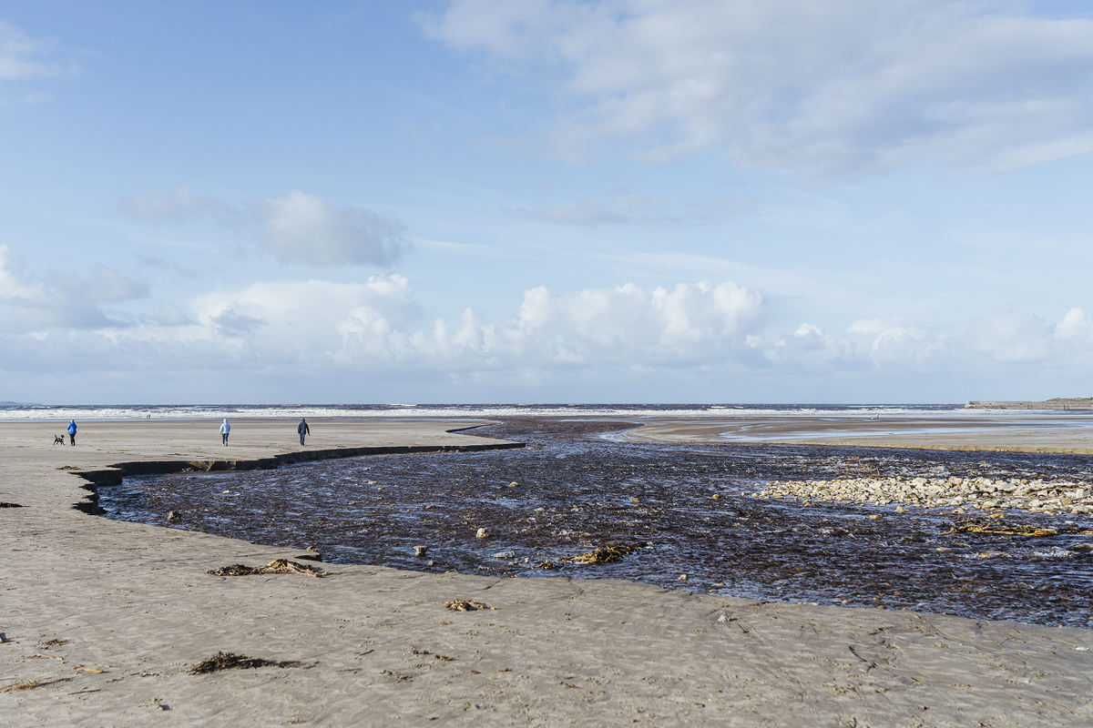 Ausflug mit Hund Irland Sligo Enniscrone Beach