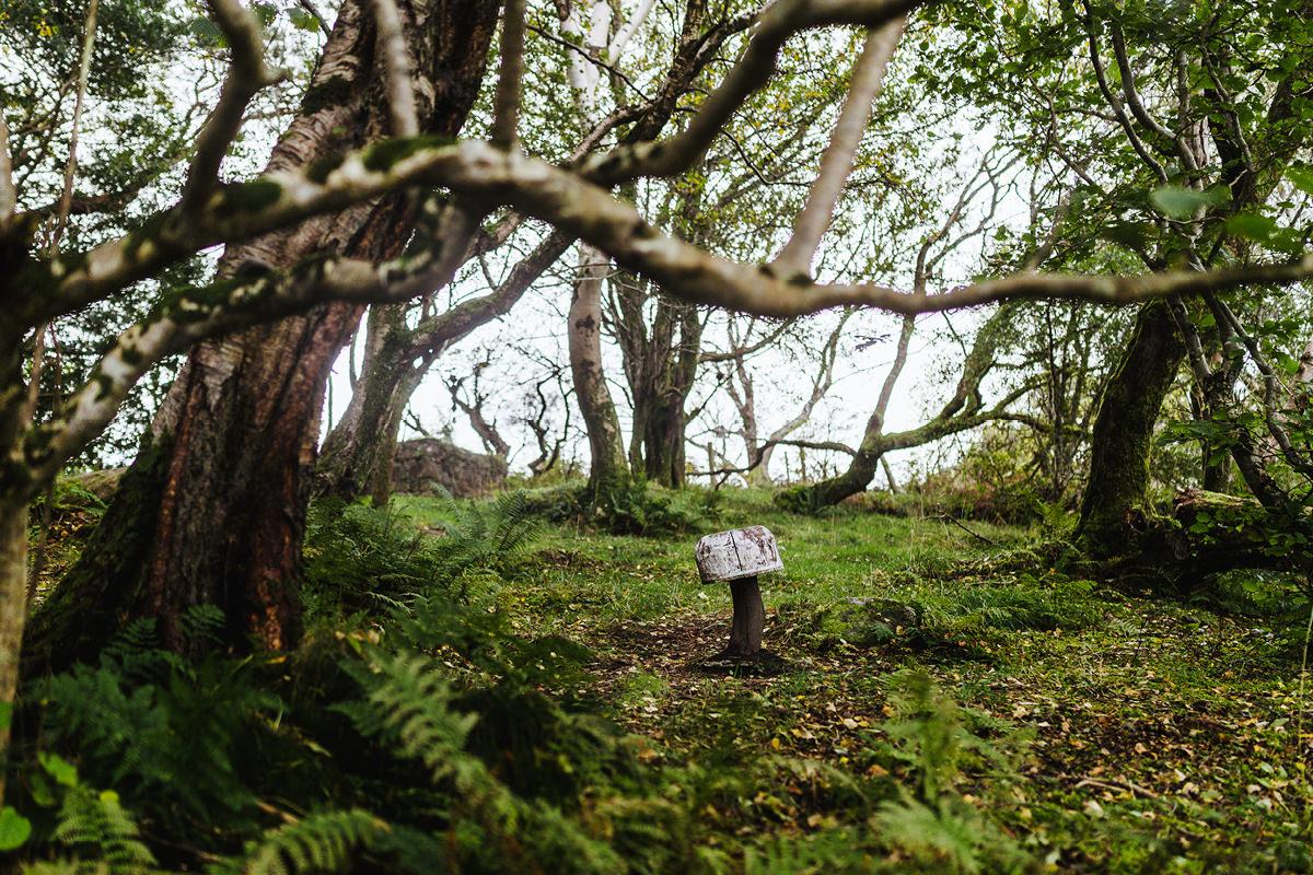 Ausflug mit Hund Irland Sligo Gleniff Horseshoe