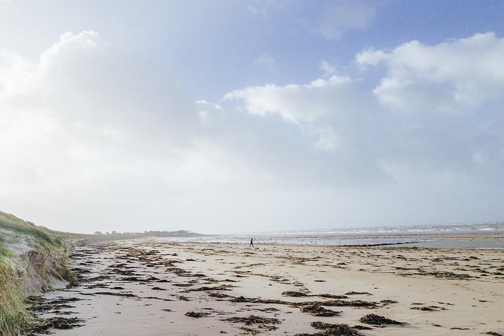 Frankreich Normandie mit Hund Winter 009
