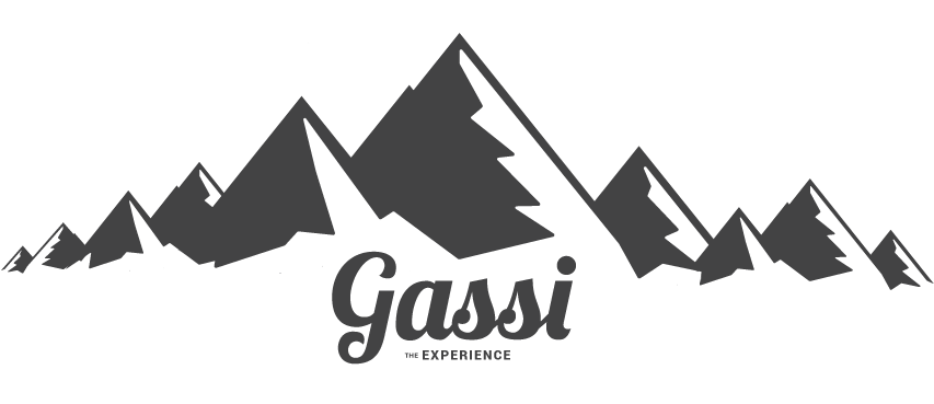 the GASSI experience