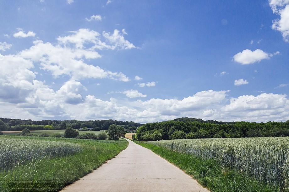 Gassi gehen Hochdorf Esslingen Sommer