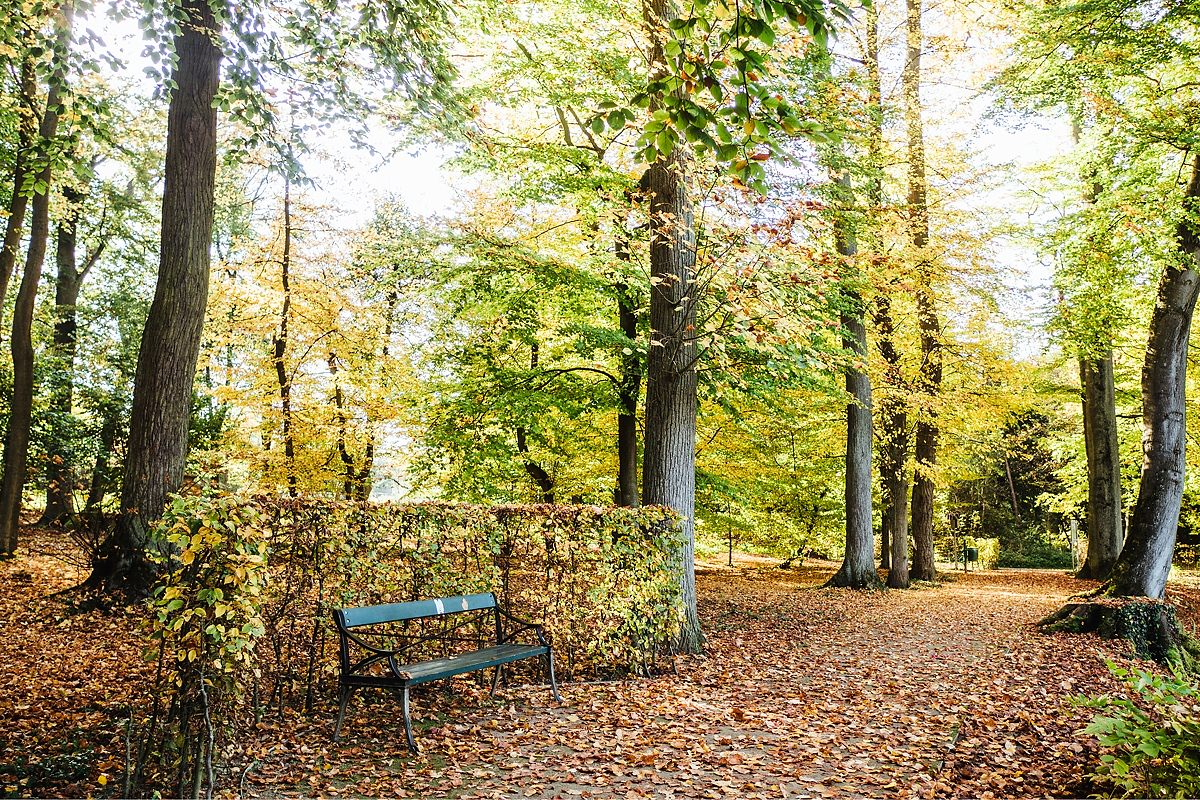 Gassi gehen Taunus Herbst