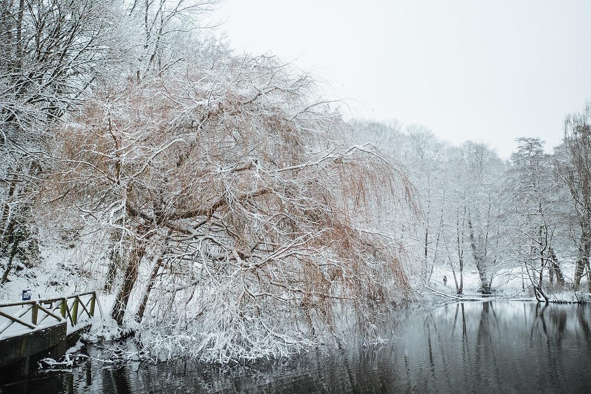 Gassi gehen Taunus Winter